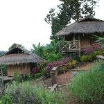 Spicy Villa Ecolodge - Bungalows in Chiang Maiの写真