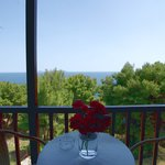 Ikion Eco standard double room with sea view21
