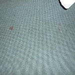 what appears to be blood on carpet