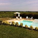 Pool and relaxation among the vineyards
