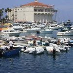 Avalon Harbor &amp; Casino, Catalina Quest