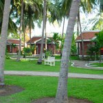 Foto de Green Coconut Resort