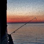 fishing at dawn from our balcony