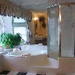  Luxury bath with jetted Jacuzzi tub and seperate shower