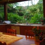 View from the kitchen to the front garden