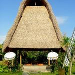  Wellness Pavillion overlooking ricefields