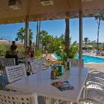 Pool-bar  Relaxia  Los Girasoles