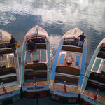 Padstow Boat Trips