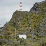  Cape Palliser