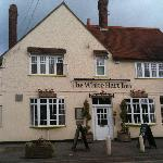 The White Hart Inn resmi