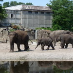 Tierpark