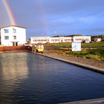 Hotel Reykjanes
