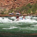 Arizona Raft Adventures - Day Tour
