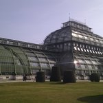 Palmenhaus Schnbrunn