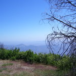 Palomar Mountain State Park