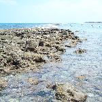 Bathtub Reef at low tide great place to snorkel and swim