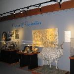 "Roseburg museum - ""Curious & Curiosities"" room"