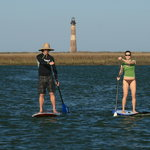 Dolphin Tour on the Folly River