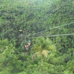 Photo of Samana Zipline Tour