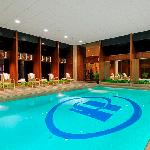 Hilton Philadelphia Airport indoor pool