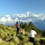 Green Valley Nepal Trek & Research Hub P. Ltd - Private Day Tours