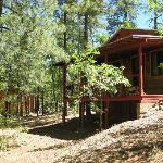  Cabin 16