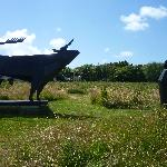 Sculpture Trail Coverack