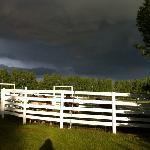  Sun shining on horses before the heavy rainfall