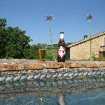 Peroni by the pool