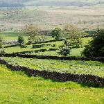 The Dales from Crooklands