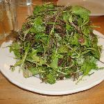 Field greens and herb salad