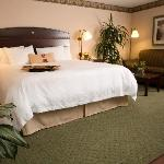 Foto de Hampton Inn Greensboro Airport