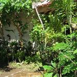 Garden of Ratu Guest House