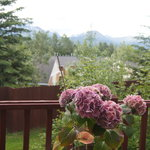 Beauty off the back deck