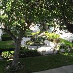  Garden at center of Motel