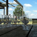 Kangarrific Hunter Valley Wine Tour