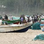 Fishing boats - the new!