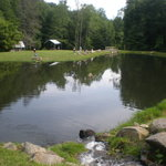 Cooper Creek Trout Farm & Pond