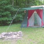 partial wooded camp site