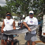 White Marlin May 2011