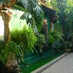 The whole place is a garden with exotic flowers and plants.