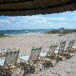 Relax in complimentary beach lounges under tiki umbrellas