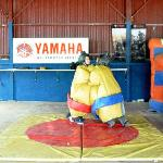 Wrestling in Sumo Suits