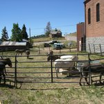 Outlaw and Lawmen Jail Museum