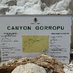 Canyon Goruppu
