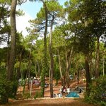 Camping Le Bois d'Amour의 사진