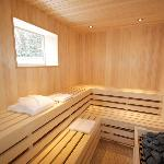  Aspen Sauna