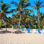 Photo de Hibiscus Beach Resort