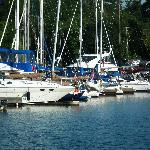  Nearby marina