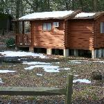  Rental Cabins